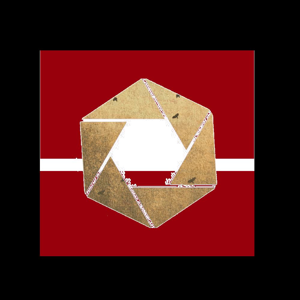 Laurie-Anne Romagne - Photographe